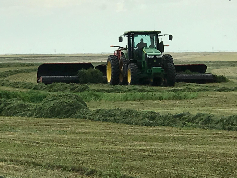 chopper clearing grass