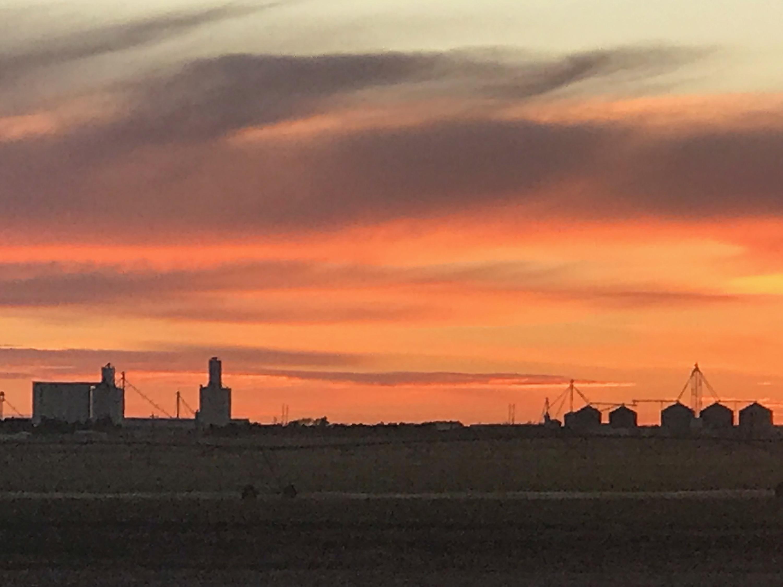 wide grassfield sunset