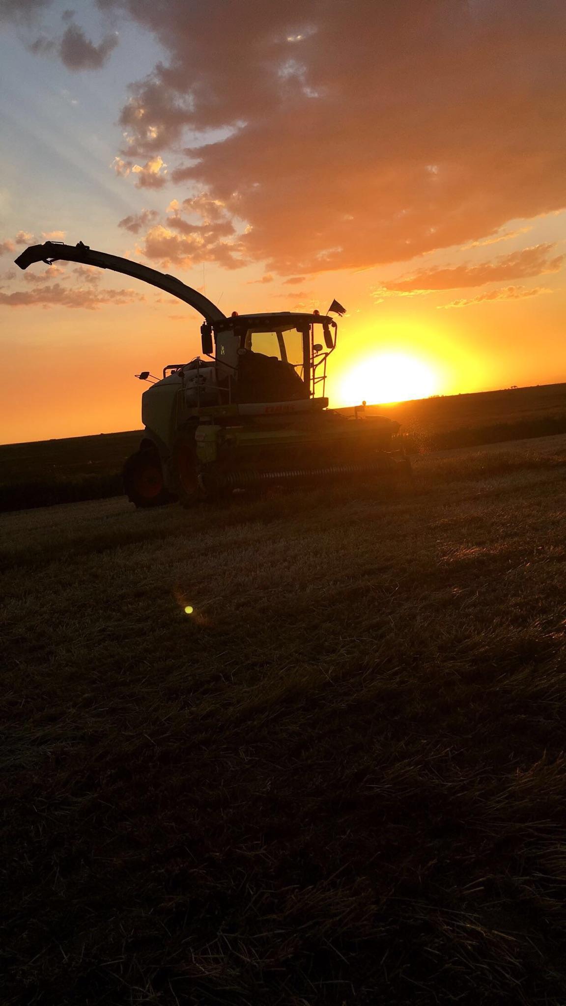 chopper sunset